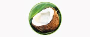 virgin-coconut-oil1-temp
